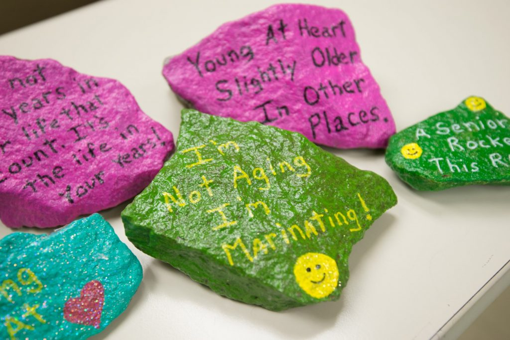 Painted rocks by older adults at senior day services